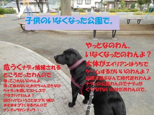 20140904-15.jpg