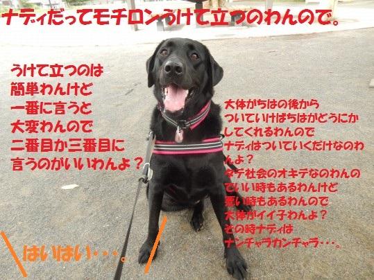20140906-011.jpg
