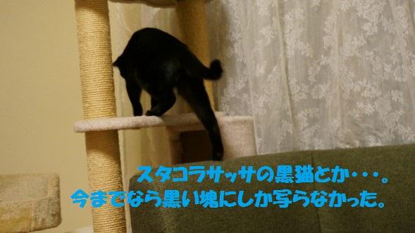 201444-006.jpg