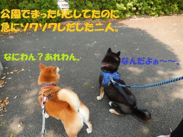 gakinncyo-01.jpg