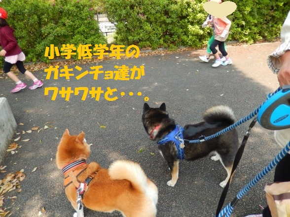 gakinncyo-02.jpg