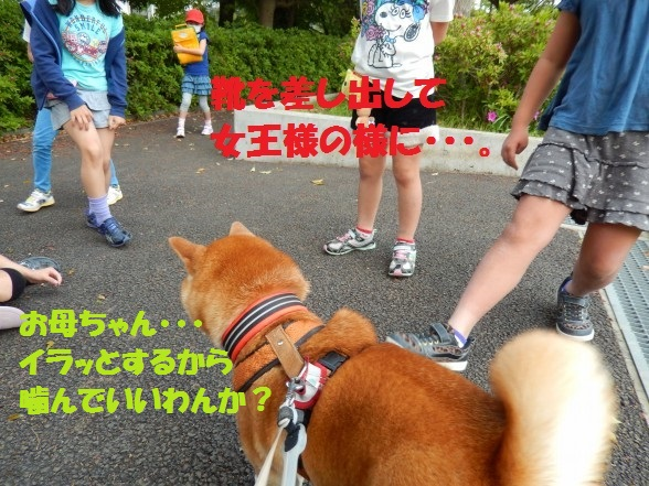 gakinncyo-09.jpg