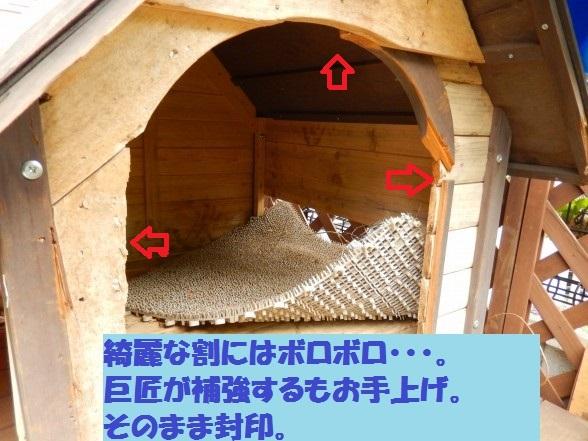inugoya-01.jpg