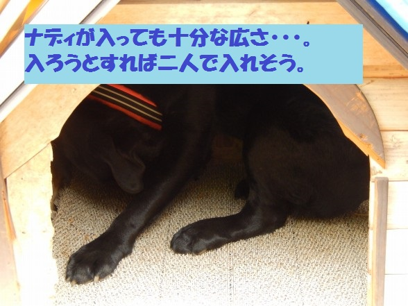inugoya-09.jpg