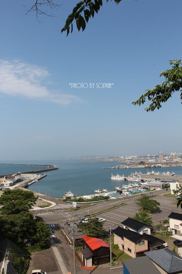 見下ろす漁港