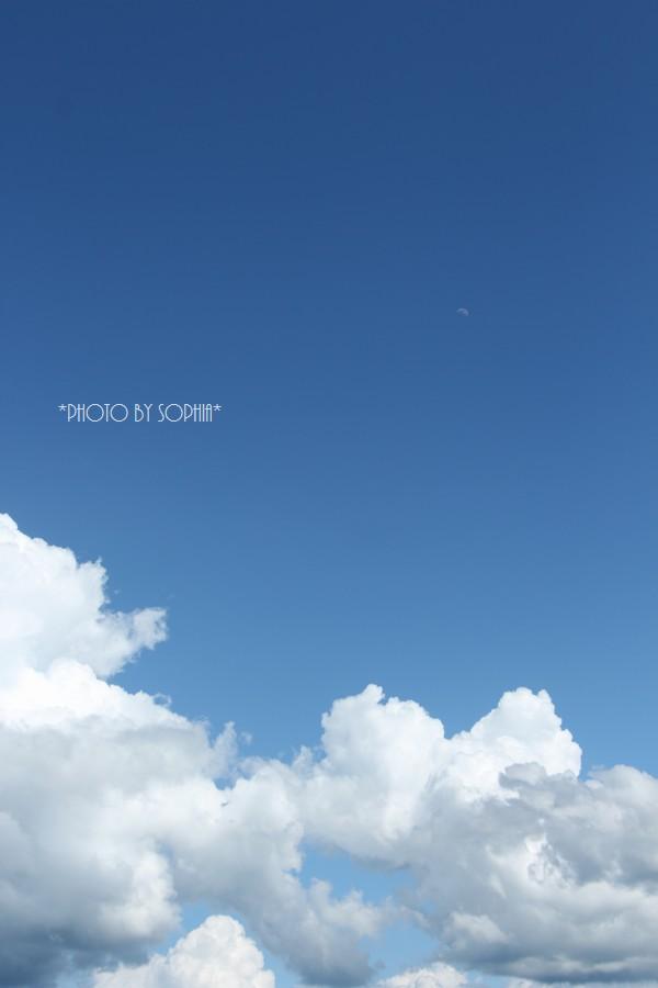 今日の月と夏雲