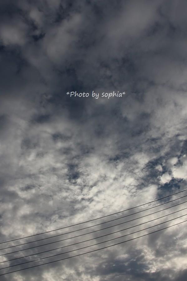 2014年8月21日の空