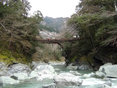 140321かずら橋