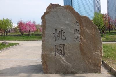 140412大阪城 桃園①