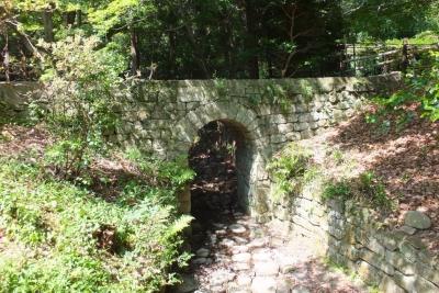 140531⑤大麻比古神社(ドイツ橋)