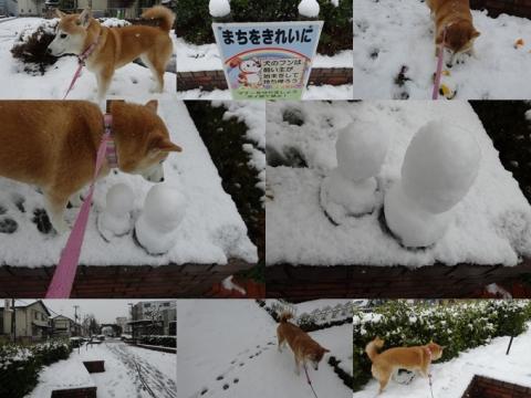 2月14日雪