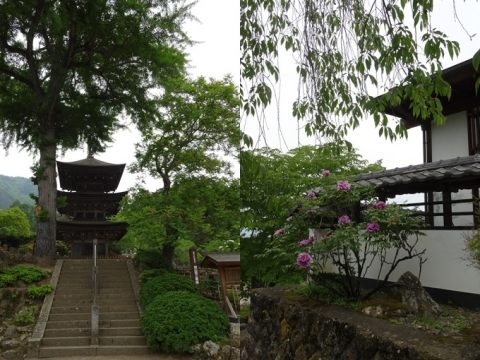 前山寺 2