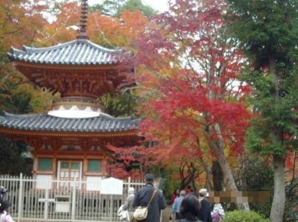 DaiitokujiKoyo2011_000_org.jpg