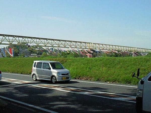 FujiwaraNanohana_006_org.jpg