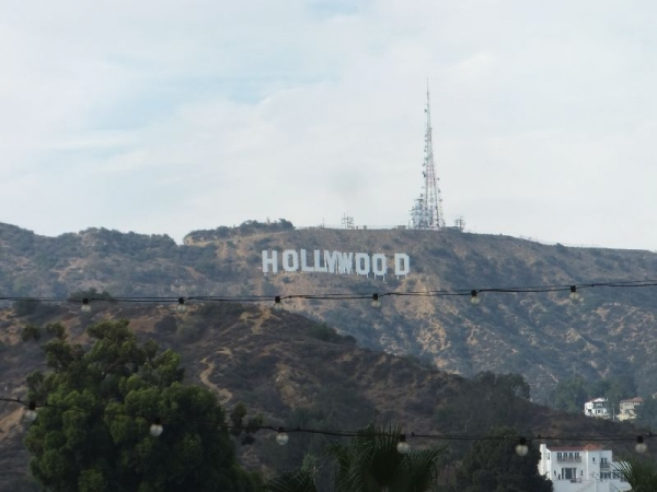Hollywood_002_org.jpg