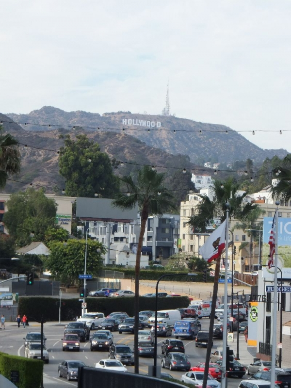 Hollywood_003_org.jpg