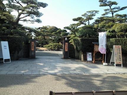 KishiwadaCarnation_001_org.jpg