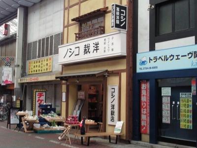KishiwadaCarnation_004_org.jpg