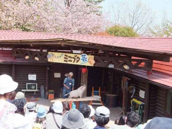 Mokumoku_008_org.jpg