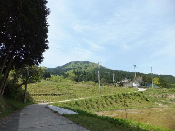 NoseMikusayama_004_org.jpg