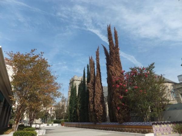 PasadenaCityHall_010_org.jpg