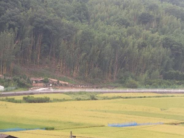 ShodoshimaPotter_008_org.jpg