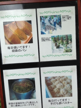 Tani4Tanaka_101_org.jpg