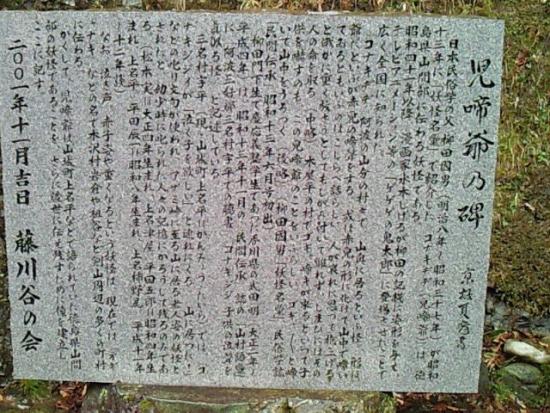 TokushimaKazurabashi_004_org.jpg