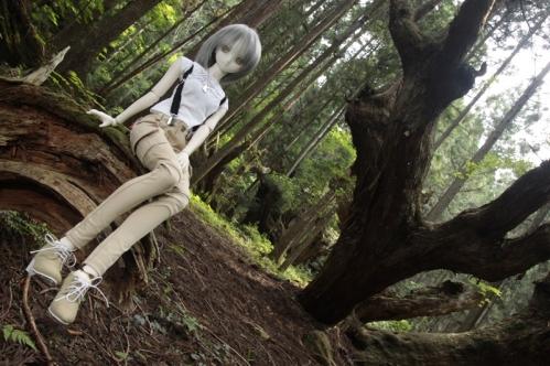 21世紀の森にて6