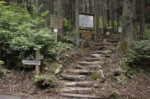 21世紀の森公園入口