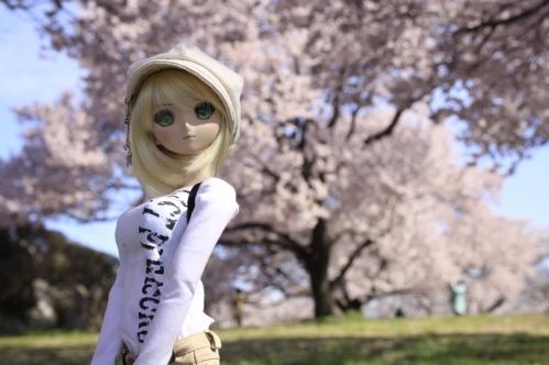 桜の木の下で4