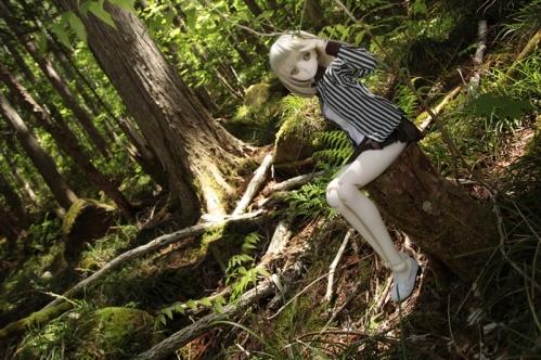 森の中で2