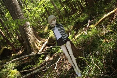 森の中で3