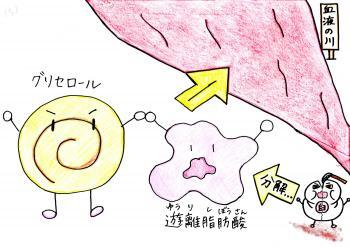 蛻・ァ」縺輔l縺溽黄3_convert_20140509173050