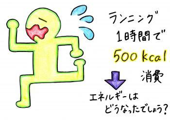 繧ソ繧ォ繧キ縺上s・点convert_20140523162943