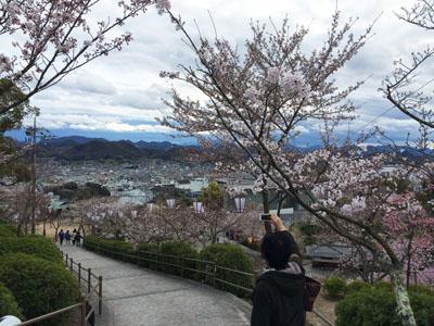 尾道。。千光寺公園