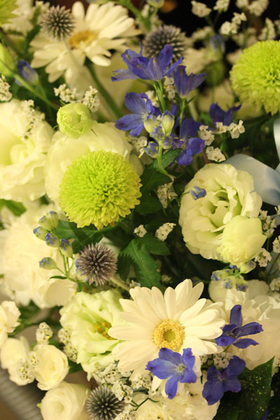 大好きなお花さんたち