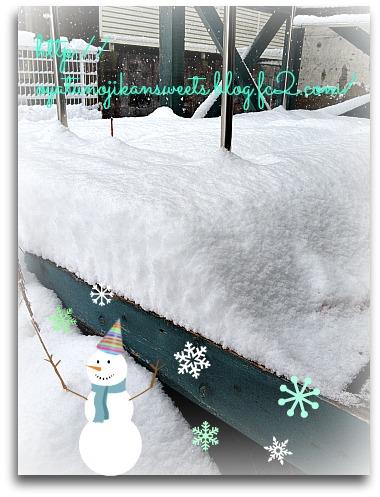 雪IMG_2460[1]