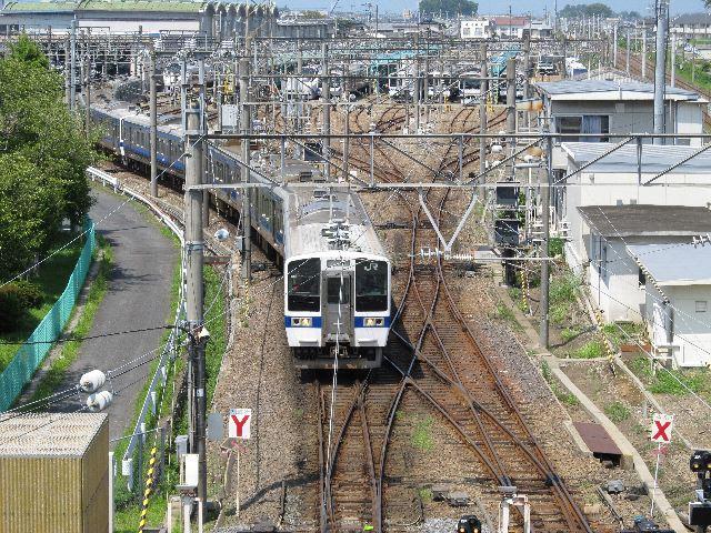 OARAI405.jpg
