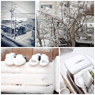 2014大雪