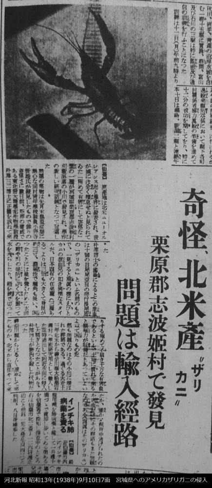 1938年アメリカザリガニが宮城県へ侵入、当時は「ザリカニ」