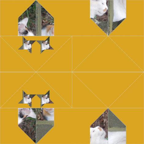 仙台・櫻岡大神宮の三毛猫1