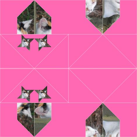 仙台・櫻岡大神宮の三毛猫2
