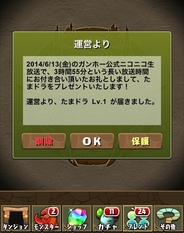 IMG_2606.jpg