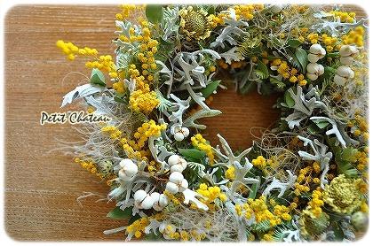mimosagreen (2)