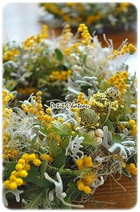 mimosagreen (3)