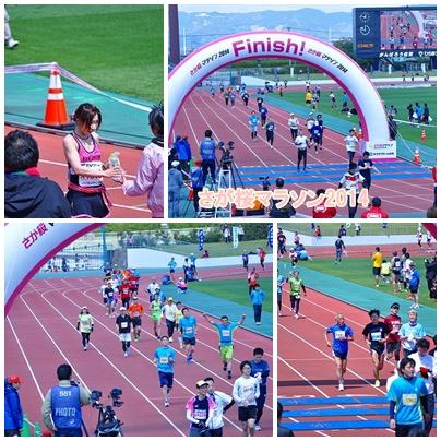桜マラソン2014④