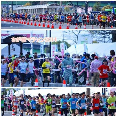 桜マラソン2014③