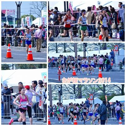 桜マラソン2014②
