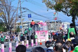 さが桜マラソン2014 (2)